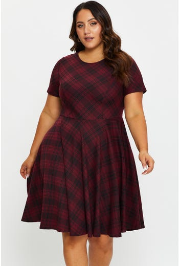 Plus Half Sleeve Check Skater Dress