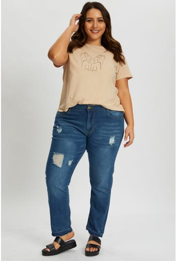 Plus Distressed Denim Skinny Jean