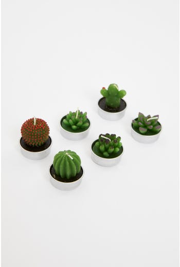 6 Piece Cute Mixed Cactus Candles